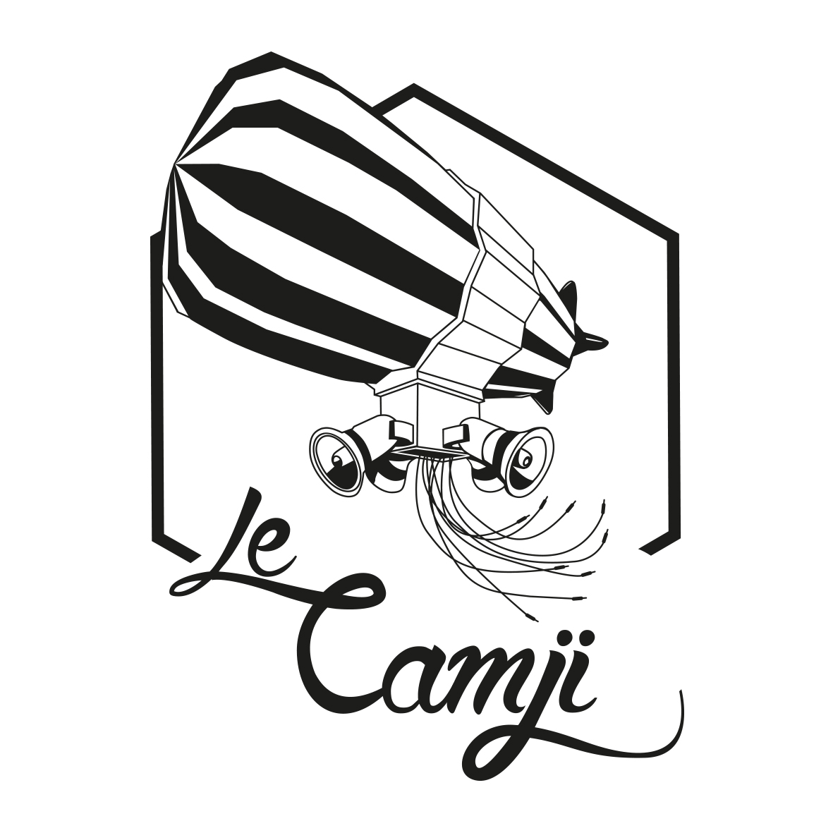 image logo camji